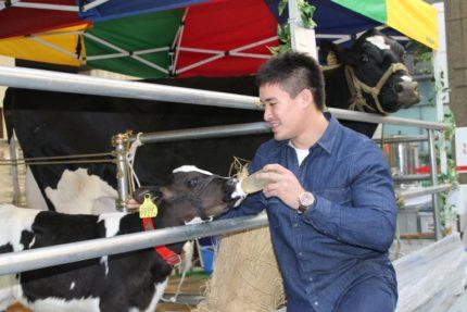 子牛と触れ合うベイカー茉秋選手